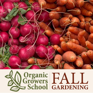 Fall & Winter Gardening