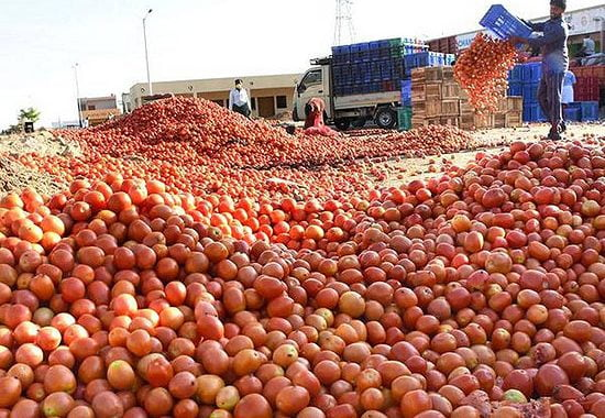 Agriculture Suffering Reeling Effects