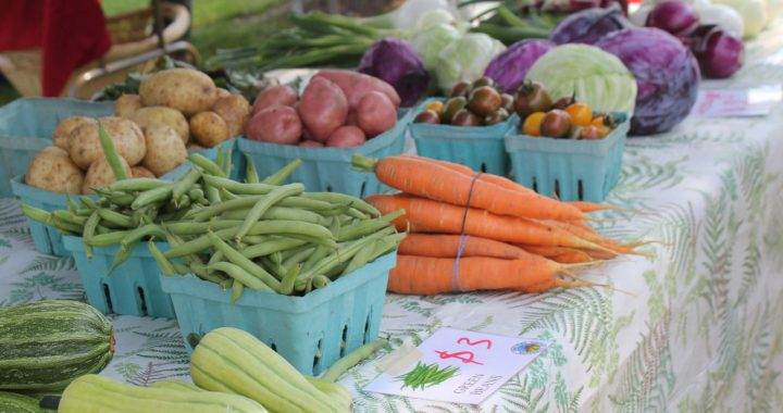 Double SNAP Expands to More Farmers Markets