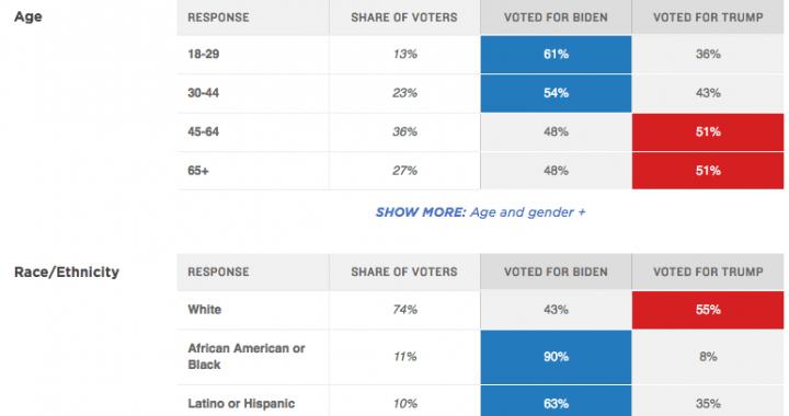 2020 Presidential Election Demographics